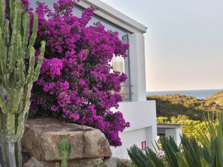Charming Romantic Bed And Breakfast Tancamelis in Marmorata Santa Teresa di Gallura Sardinia Italy