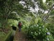 Estalagem Ponta do Sol Madeira hotel con vista mar